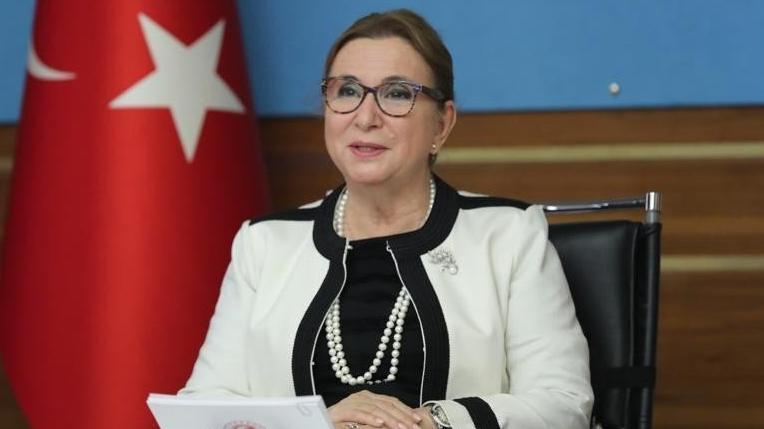 Bakanlık, bakanın şirketinden alımı kabul etti