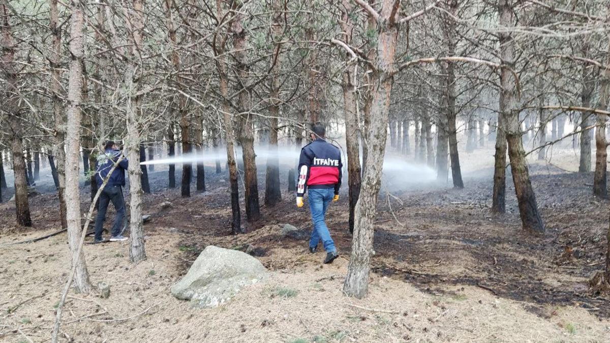 Ardahan'da ormanlık alanda yangın