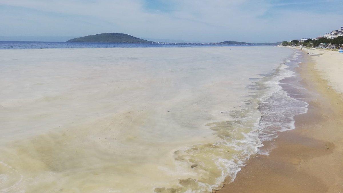 Avşa Adası kıyılarını deniz salyası kapladı