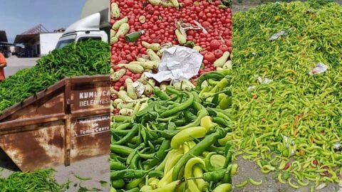 Semt pazarları kapalı olunca çiftçi elinde kalan tonlarca ürünü çöpe döktü