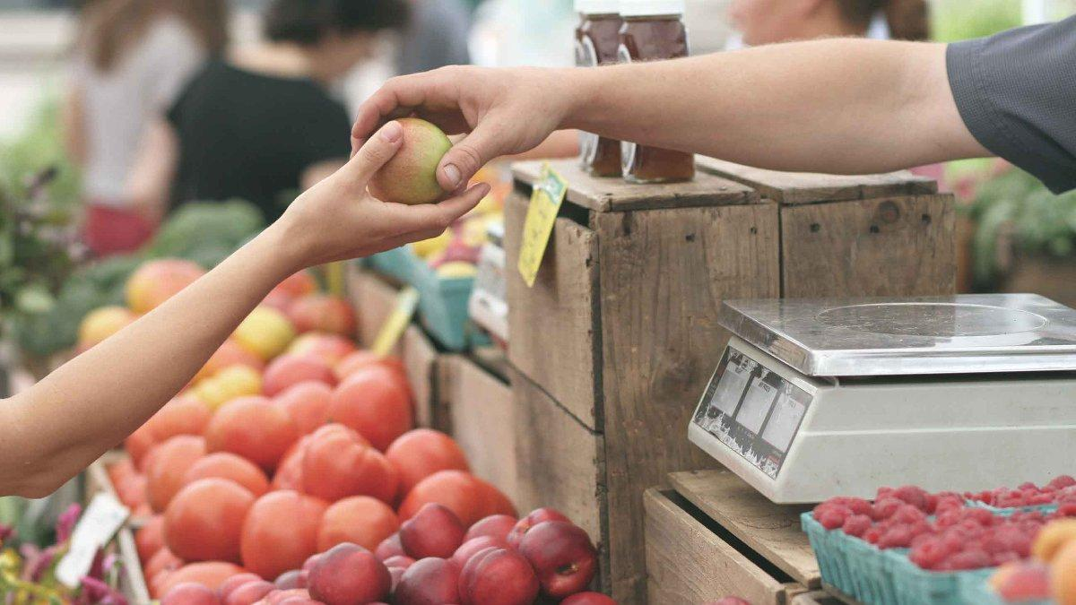 Meyveler tüketiciye hızlı ulaşmazsa yüzde 30'u çöpe gider