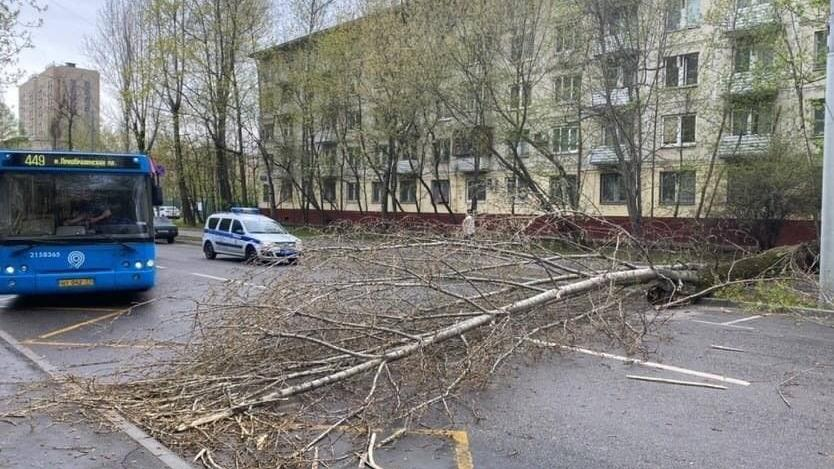 Rusya'da şiddetli rüzgar alarmı