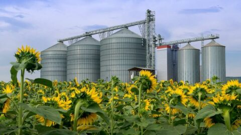 Arjantinli çiftçiye 250 milyon TL