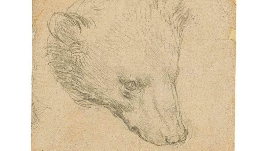 Leonardo Da Vinci'nin 16 milyon dolarlık saklı kalmış çizimi
