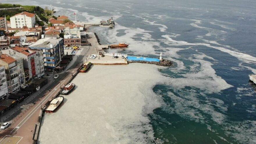 Uzmanlardan müsilaj olan bölgelerde denize girmeyin uyarısı - Son dakika  haberleri