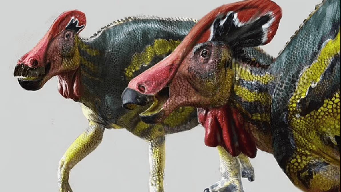 Meksika'da 73 milyon yıl önce yaşayan farklı bir dinozor türünün kalıntılarına rastlandı