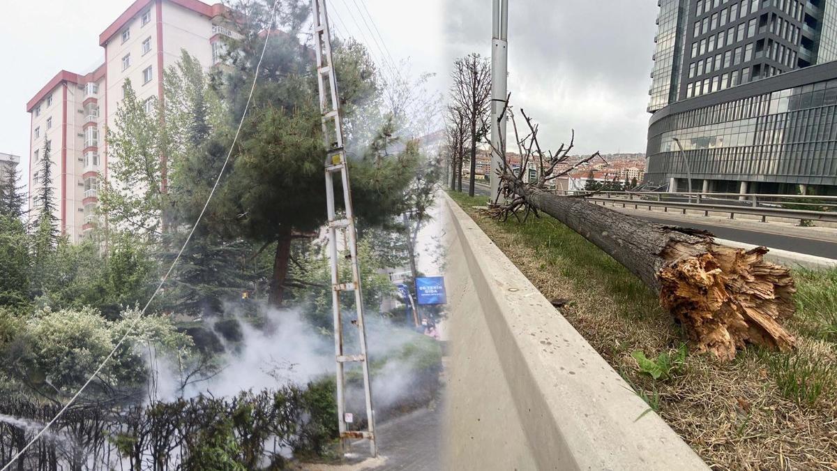 Ankara'da şiddetli rüzgar! Ağaçlar devrildi, elektrik telleri koptu
