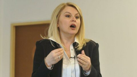 Prof. Arıboğan: Devletin zayıfladığı yerde organize suç güçlenir