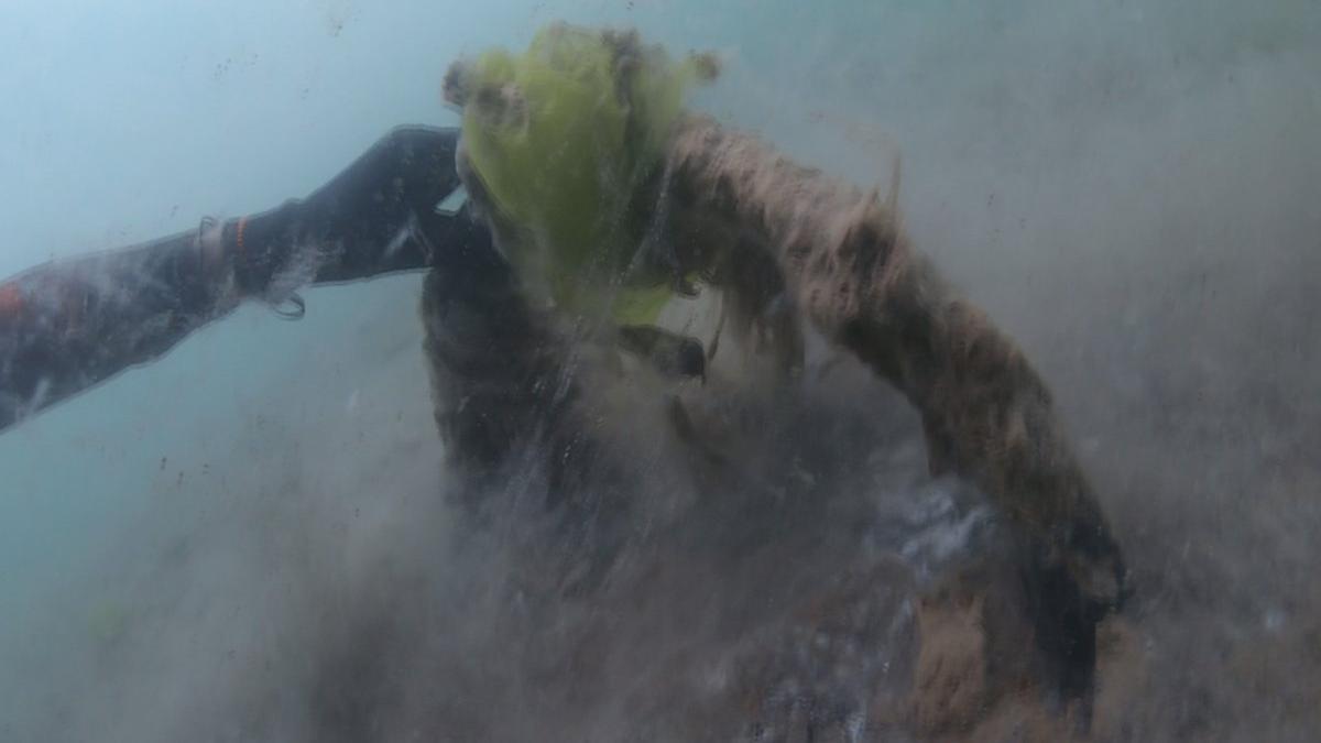 Kadıköy'den Marmara'ya daldı, korkunç manzarayı görüntüledi
