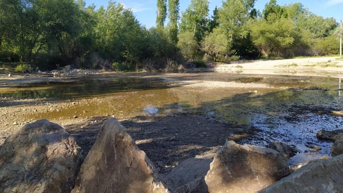 UNESCO listesindeki 8 asırlık gelenek kuraklık kurbanı oldu