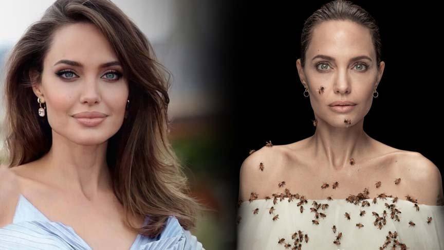 Angelina Jolie arılarla objektif karşısında