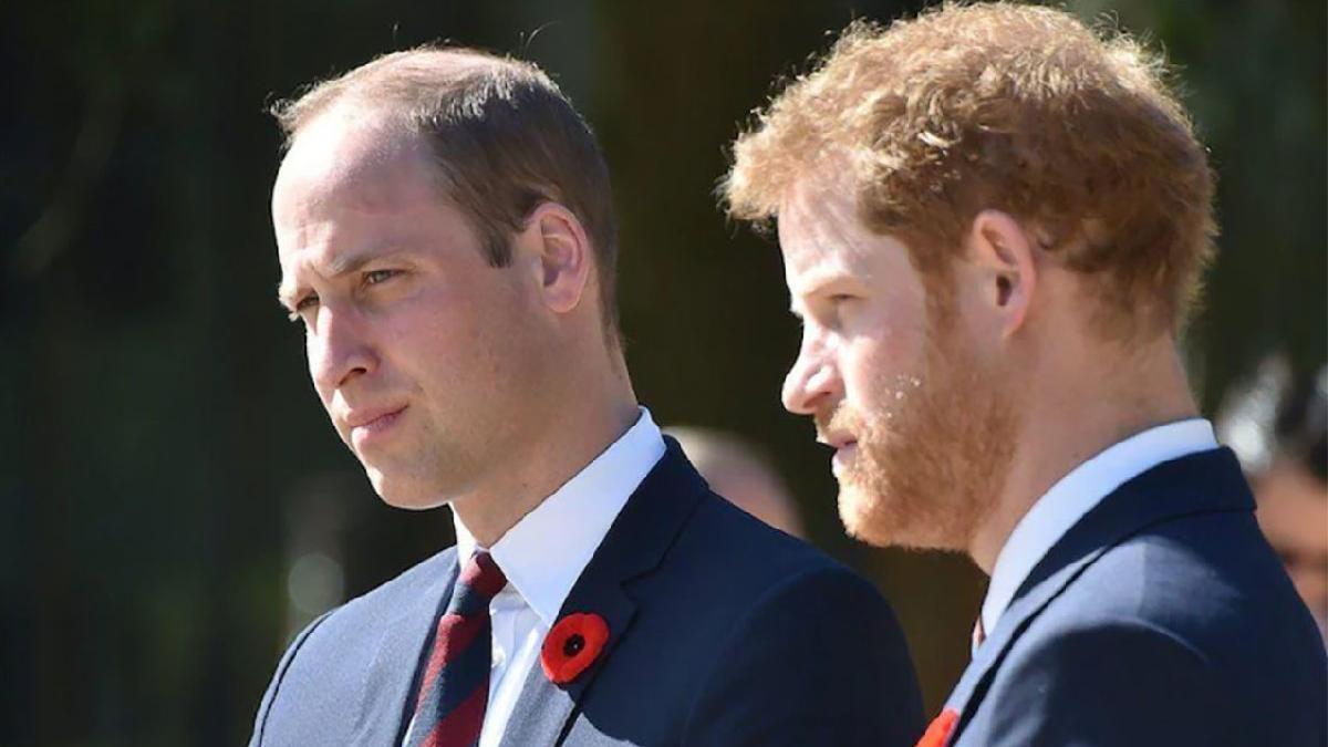 Bashir skandalı büyüyor... Prens William ve Prens Harry ateş püskürdü: Annemiz bu yüzden öldü