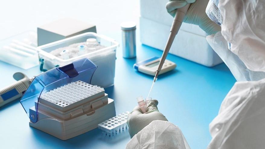Turistlere PCR testi 110 lira