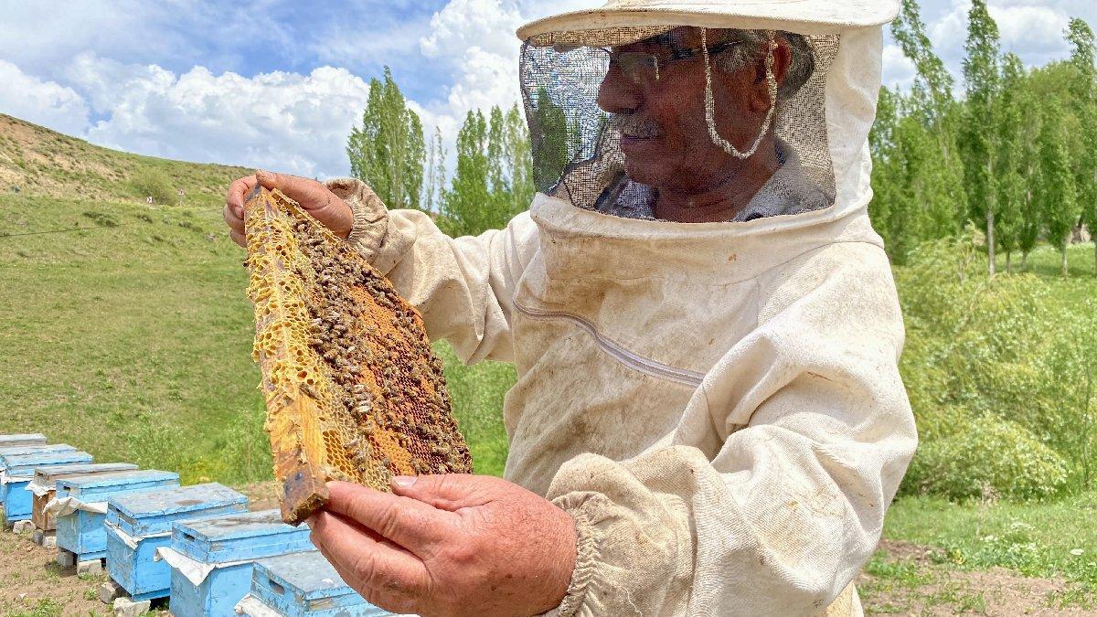 Emekli oldu, arılarla hayatı değişti