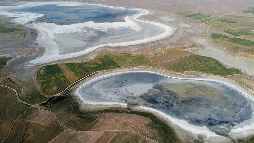 Türkiye'nin flamingo cenneti kurudu
