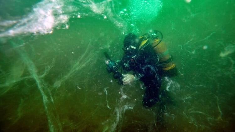 'Marmara, ölü deniz haline geldi'