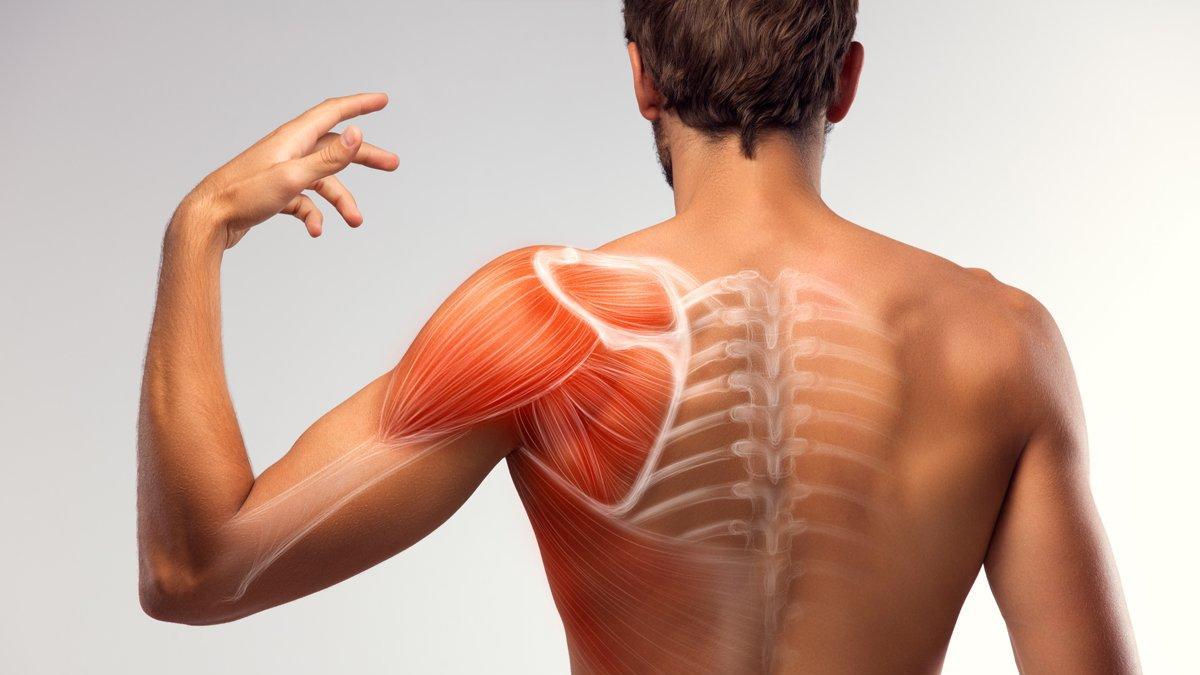 Pandemi sürecinde kas ağrıları arttı
