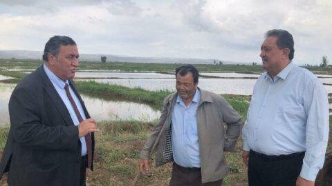Çiftçiden ithalat tepkisi: TMO alım yapmazsa biteriz