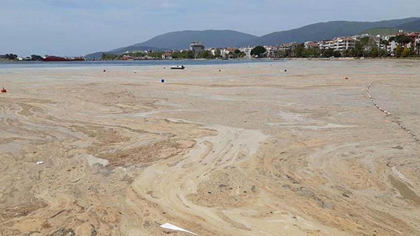 Marmara Denizi için korkutan müsilaj açıklaması: Koma halinden 5-6 yılda çıkarabiliriz