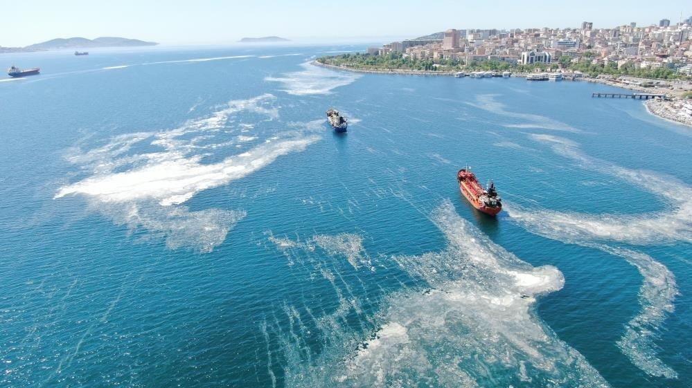 'Marmara Denizi bağırıyor: Konuşmayı bırakın eyleme geçin'