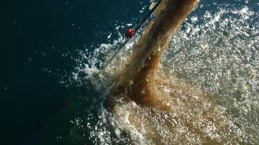 'Yetkililere seslenmeye gerek yok artık, Marmara Denizi bitti'