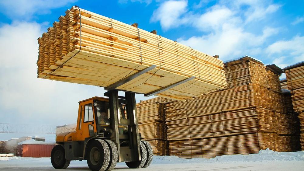 Bazı ağaç ürünlerinin ihracatı izne bağlandı