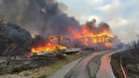 Norveç'te orman yangını: Yüzlerce kişi tahliye edildi