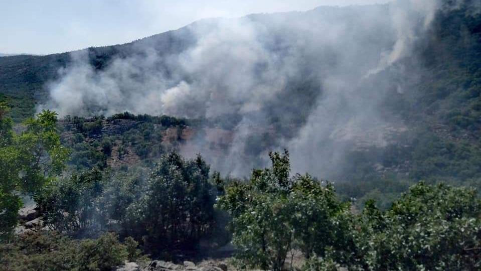 Elazığ-Diyarbakır arasında orman yangını 3 gündür kontrol altına alınamadı