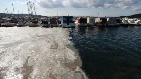 Marmara Denizi için müsilaj uyarısı: Kanal İstanbul çılgınlığından vazgeçilmelidir