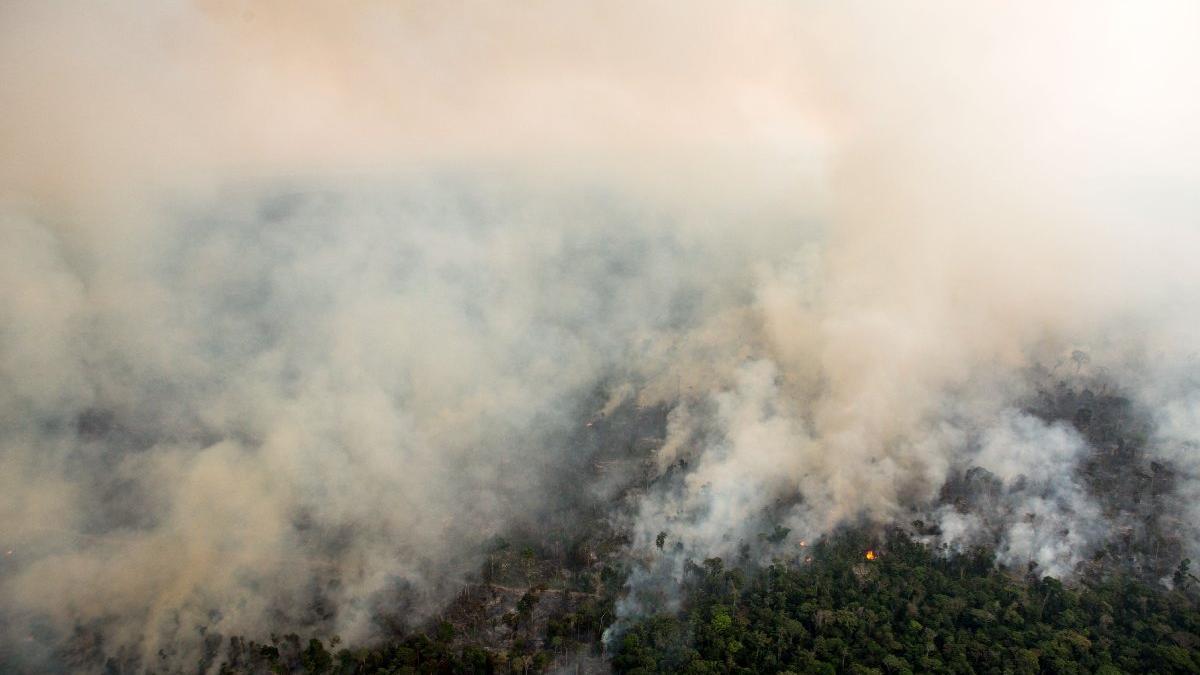 Günlük 1.3 milyona kiralanan uçaklar gelmedi, ormanlarımız alev alev yanıyor