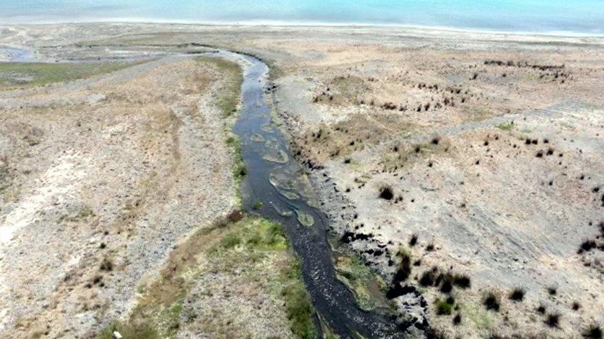 Salda Gölü'nü kirletenlerin inekler olduğu iddia edildi