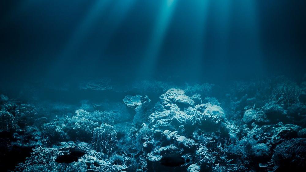 National Geographic yeni okyanusu resmen tanıdı: Güney Okyanusu
