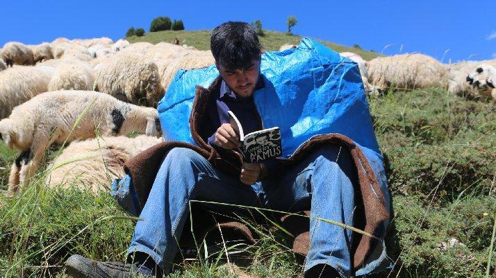 Çobanlık yaparken Robert'e girmişti… Hollanda Büyükelçiliği, için harekete geçti