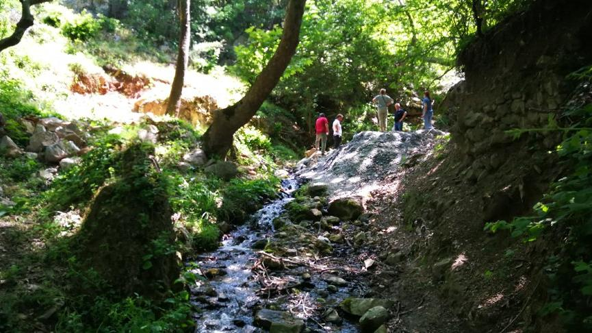 Asırlık çınar ağaçları ve su kaynakları maden tehdidi altında