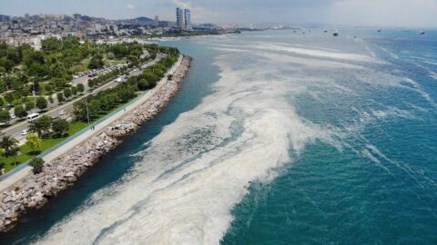 'Marmara Eylem Planı Katar'a yeni kazanç kapısı olacak'