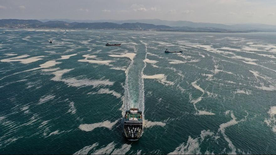 Marmara Denizi göz göre göre salyaya boğulmuş!