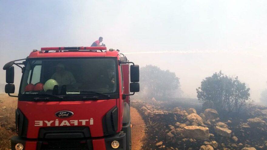 Ağaçlık alanda yangın! 200 dönümlük alan küle döndü