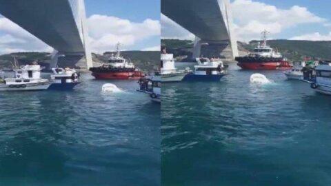 Boğaz'da balıkçı teknesine gemi çarptı: 2 ölü