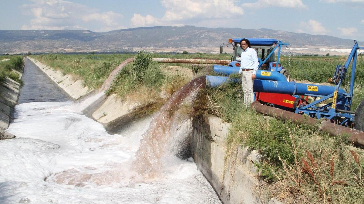 Tarlayı zehirle suladılar: Balıklar öldü, ürünler kurudu...