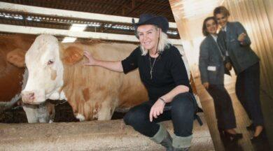 Hostesliği bıraktı inekleriyle çok mutlu