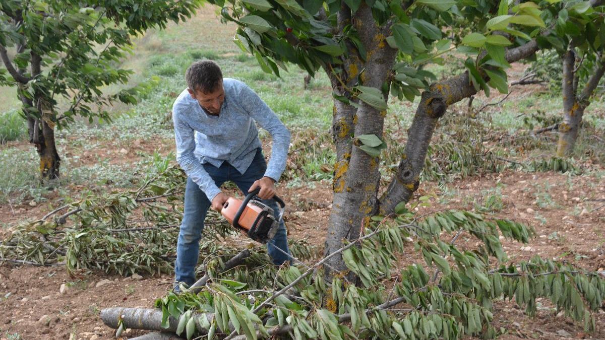 'Bahçede 2 lira, kiraz tezgahta 15 lira' dedi, ağaçlarını kesti