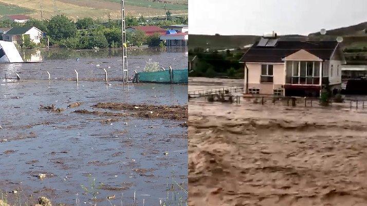 Ankara'da dere taştı: Hayvanlar öldü, evler su altında kaldı