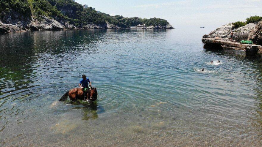 Yarış atıyla denizin tadını çıkarttı