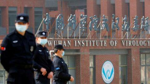 Bir araştırma daha Çin'in virüsle ilgili verileri sildiğini iddia etti