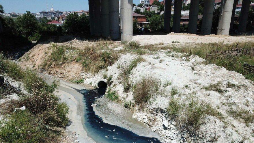 Şamlar Gölü'ne akan dereye kimyasal atık karıştı