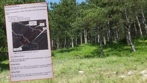 Köylülerden büyük tepki.... Binlerce ağaç kesilecek