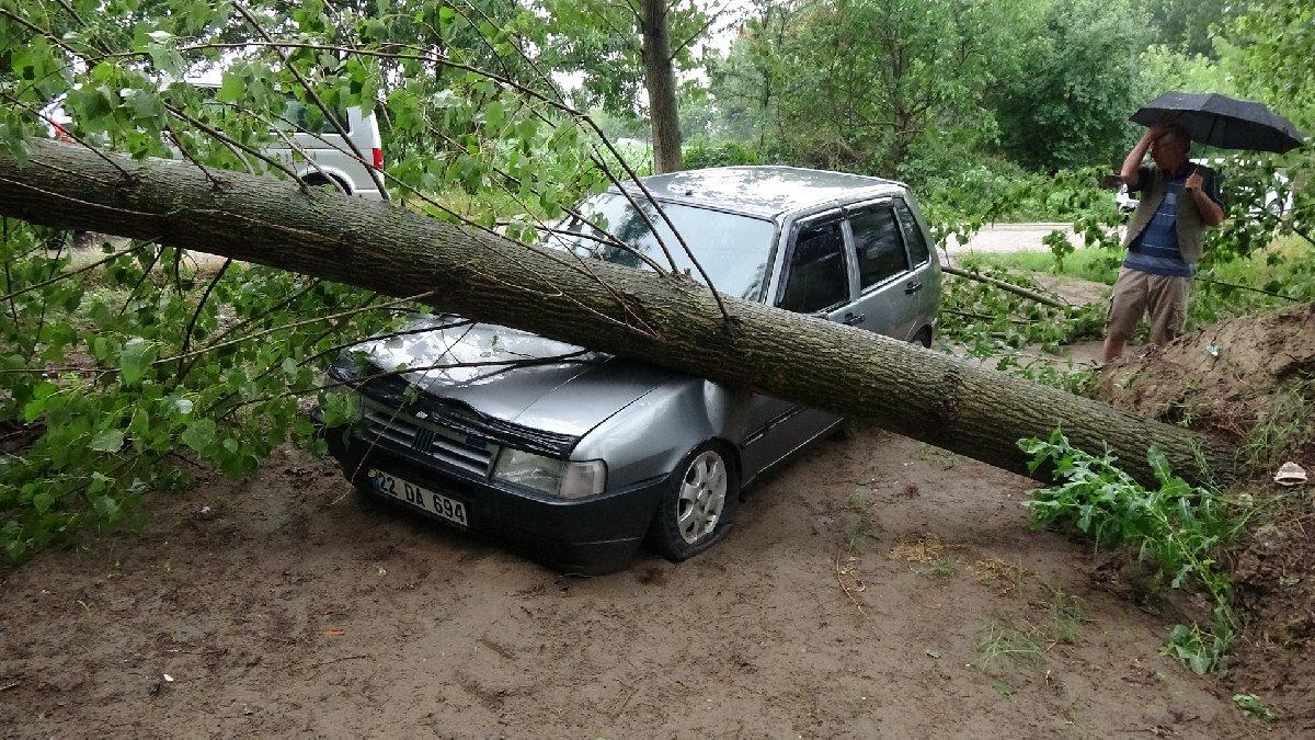 Edirne'de şiddetli fırtına ağaçları devirdi