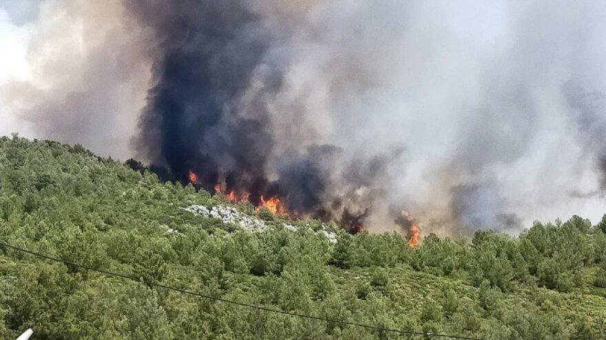 Kaş'ta, Dalaman'da, Genç'te, Tarsus'ta ormanlarımız yanıyor