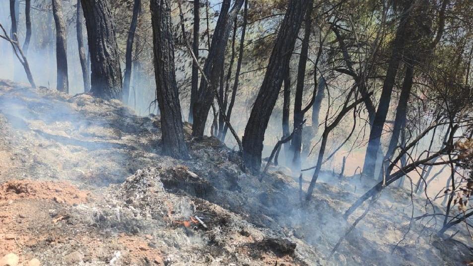 Orman yangınları sürüyor; yerleşim yerleri tahliye edildi
