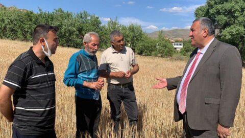 'Kuraklık tarlaları yakıp geçti'